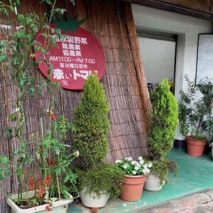 山街グルメ#13(今泉台・赤いトマト)