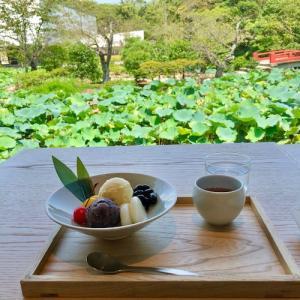 鎌倉 雪ノ下・茶寮 風の杜(黒豆かん)