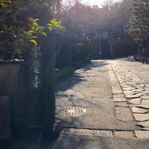 北鎌倉・東慶寺 睦月の風景