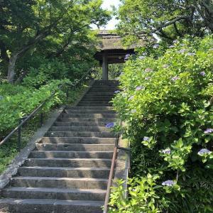北鎌倉・東慶寺 水無月の風景