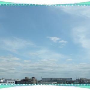 今日は和菓子の日&鳩ちゃん&お花♪米^-^米
