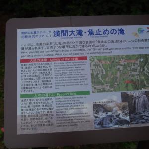 ワンコと軽井沢旅行その2『浅間大滝』『魚止めの滝』