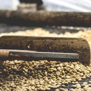 安定の高品質、ウォッシュド精製のコーヒー豆の特徴
