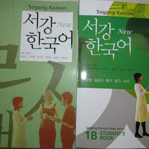 韓国語の新しい教科書 通級とオンライン授業