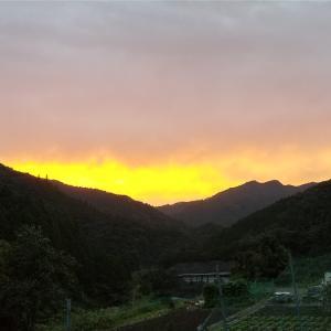和歌山廃校キャンプから帰ってきました