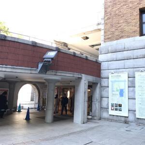 恐竜を見に、国立科学博物館に行ってきました🦖