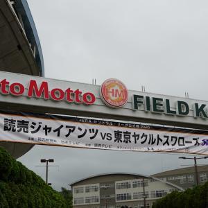 これが、新しいプロ野球観戦・そして燕征