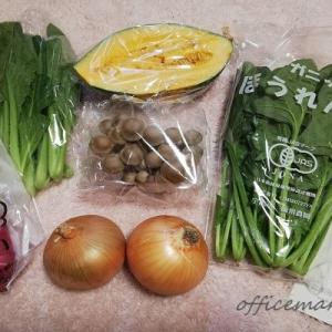 【京都発】西日本の有機野菜なら坂ノ途中が抜群に良かった!お野菜お試しセットの口コミ