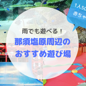 【雨でもOK&1人500円未満】那須塩原周辺で赤ちゃん連れにおすすめの室内遊び場3選!
