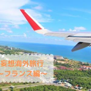 【フランスへ初帰省】妄想海外旅行をしてみた!