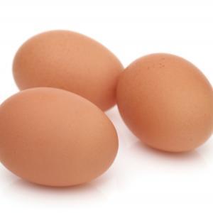 子供の心は卵の様に扱う。強さによって潰れたり、落してしまう。