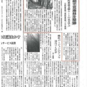 2019年9月5日日刊木材新聞に紹介されました!