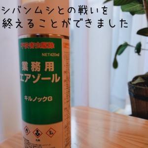 最強の殺虫剤VSシバンムシ やっと駆除できた方法