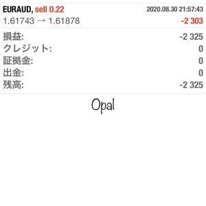 8/31 Opalの結果報告