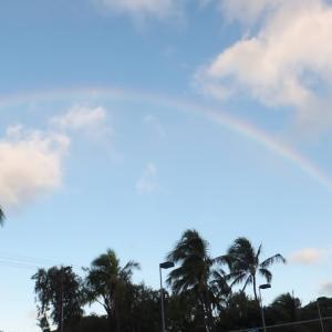 大きな虹です!!
