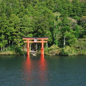 箱根は三島から行くのもおススメと思う。10時前の元箱根は静かでおススメ