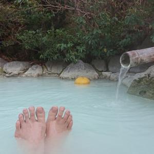 別府明礬温泉 岡本屋旅館の青磁色のお湯はpH2.6の酸性だけどなめらかな温泉