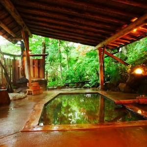 密を避けて温泉ひとり旅。東鳴子温泉「旅館大沼」の重曹泉を8つのお風呂で楽しむ