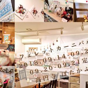 【追記あり】フェレットカーニバル展閉幕☆そして、記念グッズ通販!
