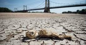 温暖化で25兆円の損失