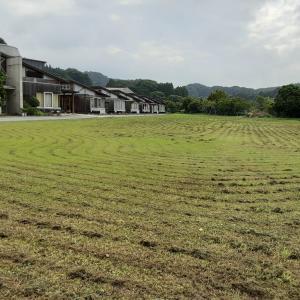 校庭の草刈り