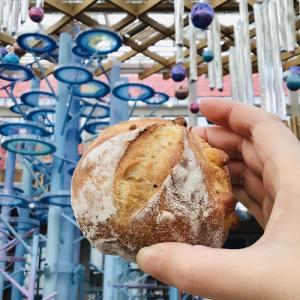 中心街 小さなパン屋さんブーランジェリーTAKA 生地がサクサクで美味しいので食べてみて!