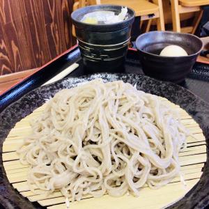 おいらせ町 アグリの里おいらせで(多分)パパイヤの天ぷらとざるそば