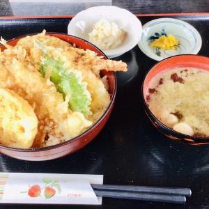 湊町 1キロ蕎麦が美味しい時期!悦中庵ランチ