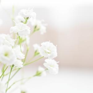 【2020冬ドラマ】「アライブ ~がん専門医のカルテ~」#11(最終話)のあらすじと感想