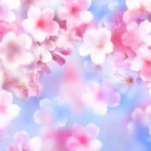 【行事・しきたり】【4月】花見にまつわる豆知識  ~あったかいんだからー byくまもん~