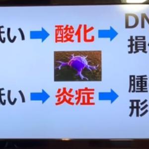 癌になったら、「マグネシウム」を摂れ!!!