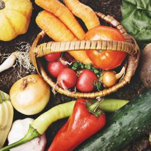 潰瘍性大腸炎クローン病 癌化予防に! 葉酸を食事から効率よく摂る方法