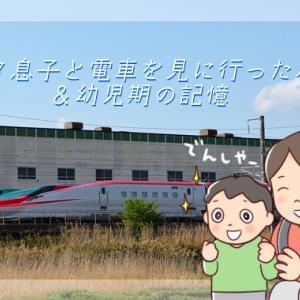 鉄オタ息子と電車を見に行った思い出&幼児期の記憶