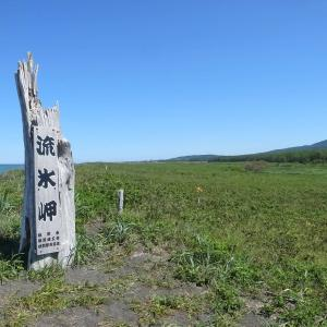 オムサロ原生花園(流氷岬)ここを訪れると、こころがあらわれます!