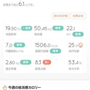 【健康・ダイエット】ダイエット始めます!タニタの体組成計を使って記録!