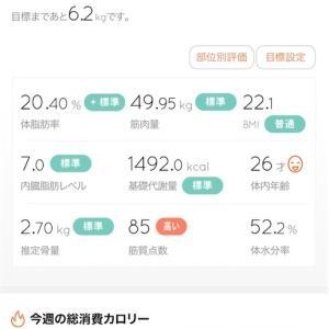 【ダイエット】11/15 体重経過報告!