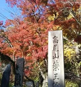 高尾山に登ってきました!