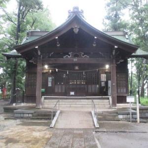 ザーザー降りの雨の中を浅間神社から花壇へと~(富士森公園2020年7月4日)