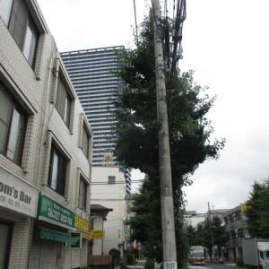昨日よりちょっと爽やかな空気感の八王子駅南口周辺(2020年7月12日)