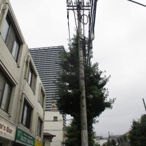 梅雨の最後の雨かな?今朝の八王子駅南口周辺(2020年7月23日)