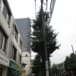 また雨が激しく降りだした八王子駅南口周辺(2020年7月25日)