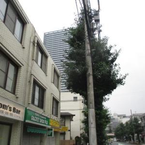 朝からの雨が上がり曇り予報の八王子駅南口周辺(2020年7月31日)