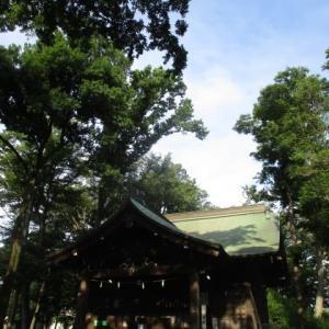 大きな木々の木陰が涼しい今朝の富士森公園(2020年8月2日)