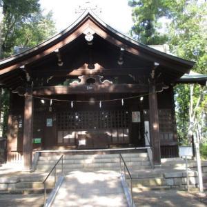 浅間神社の木陰が本当に気持ちいい富士森公園(2020年8月14日)