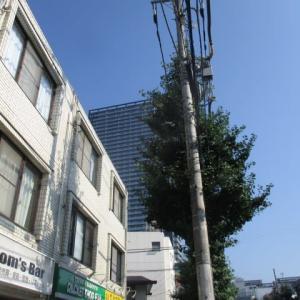 朝から蒸し暑さが増してきた八王子駅南口周辺(2020年8月15日)