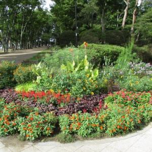 キレイに雑草が刈られてた富士森公園(2020年9月18日)