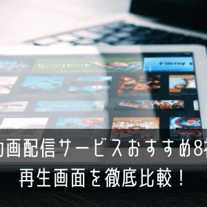 動画配信サービスおすすめ8社の再生画面を徹底比較!(PC)