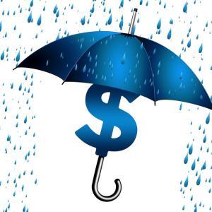 【ドル建て保険】メットライフ生命のドルスマートを10年間払い込んだ結果を公開します(メリット・デメリット)