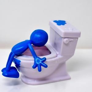 【新築】マイホームのトイレで後悔したくないならTOTOにすべき理由