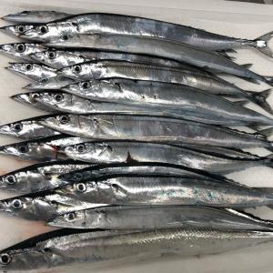 秋刀魚を求めて〜